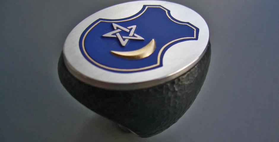 Wappenring Eisen, Silber925, Gelb- und Weissgold750, Colorit